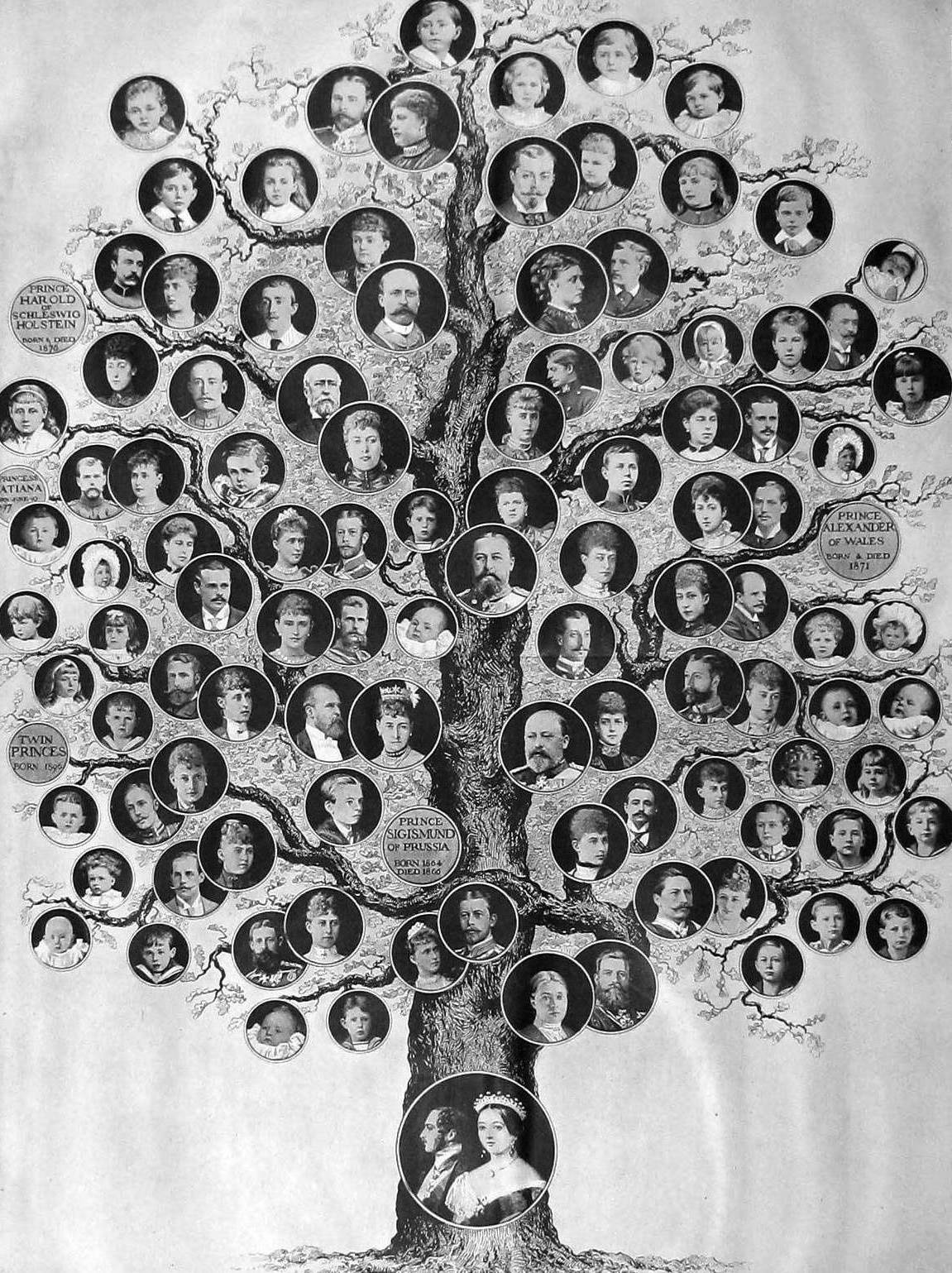 Queen Victoria genealogical tree