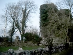 The ruins of Grange Castle, County Galway.