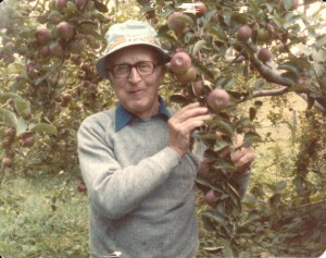 Arthur Belforti picking apples in Southborough Mass 1984
